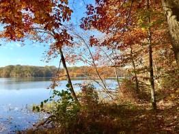 Golden Hour Burke Lake Park, Virginia