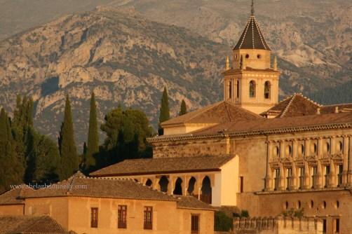 Alhambra Granada 9513 Copyright Shelagh Donnelly copy