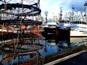 False Creek 0521 Copyright Shelagh Donnelly
