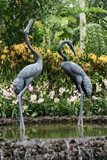 Singapore Botanic Gardens 9121 Copyright Shelagh Donnelly