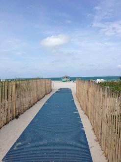 miami-beach-copyright-shelagh-donnelly