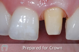 Prepared for Crown