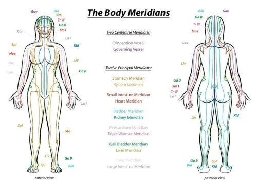 meridian line chart