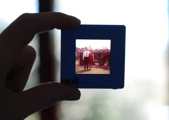 Woman holding family picture slide up to the light - Epigenetics are like slides of family history embedded in our gene expression