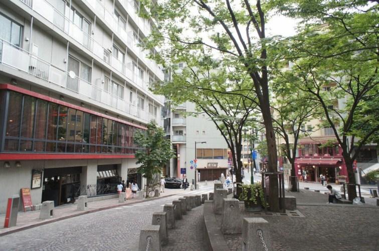 Photo Credit: realestate-tokyo.com