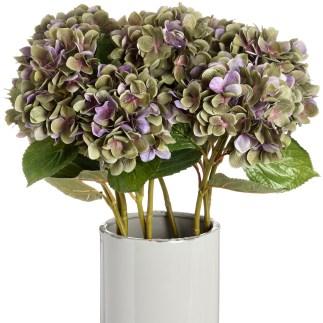 Hydrangea Stem, £7