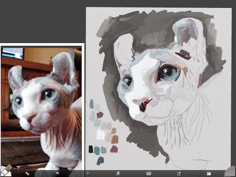 Painting a cat step by step in ArtRage featuring Remy the Gargoyle Sphynx hairless cat step 4
