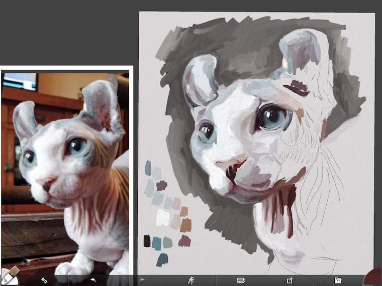 Painting a cat step by step in ArtRage featuring Remy the Gargoyle Sphynx hairless cat step 5