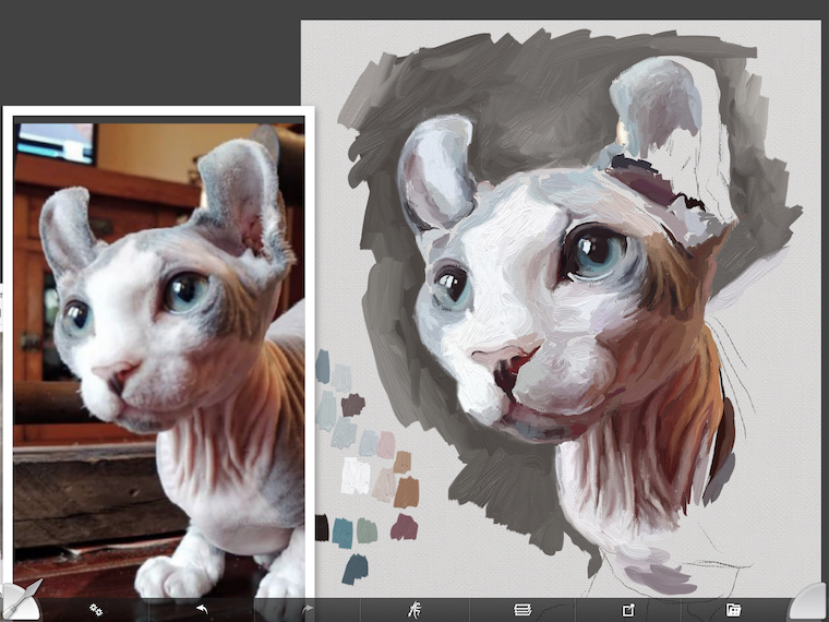 Painting a cat step by step in ArtRage featuring Remy the Gargoyle Sphynx hairless cat step 6