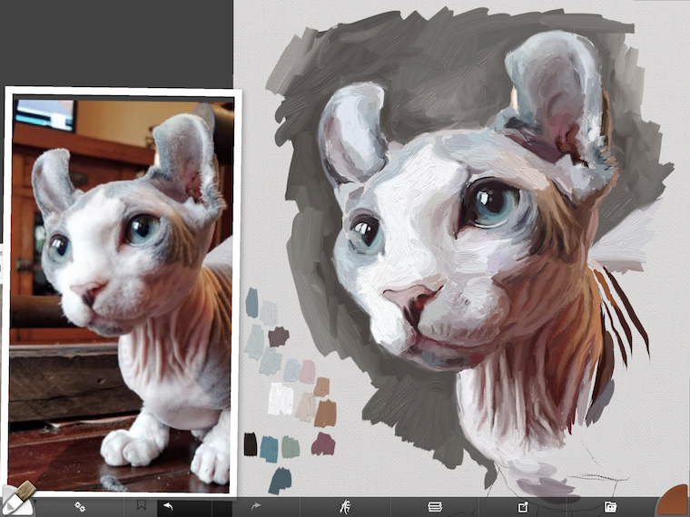 Painting a cat step by step in ArtRage featuring Remy the Gargoyle Sphynx hairless cat step 7