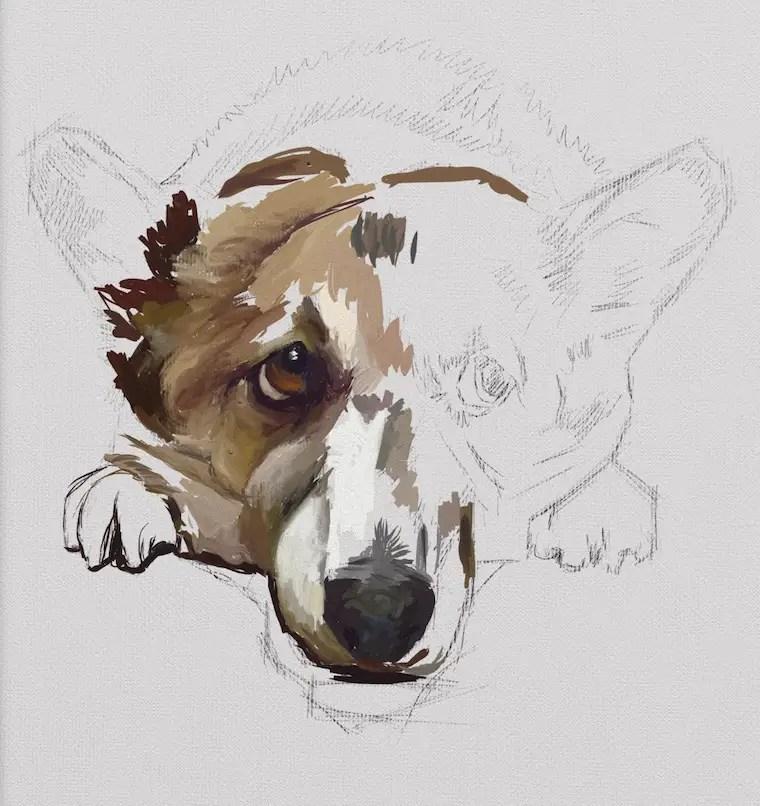 dog tip 3 - 9 Helpful Dog Portrait Tips