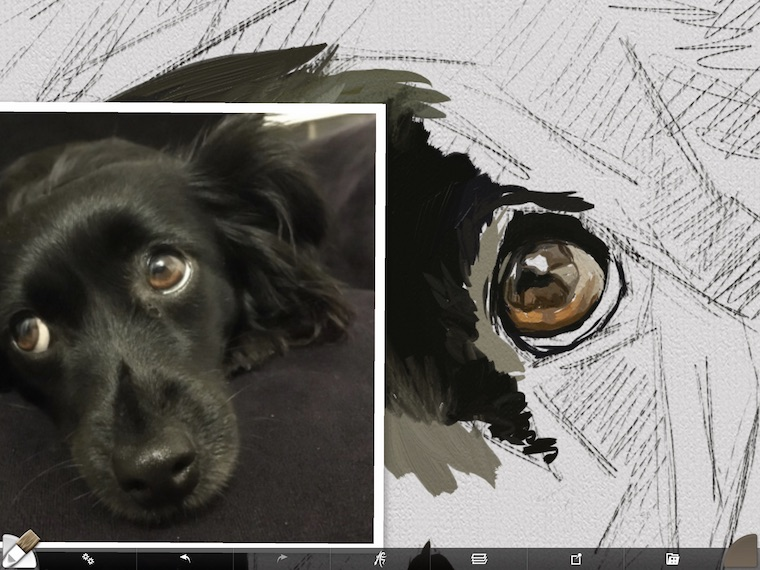 step 3 eye close up 8 tips for painting black fur traditional and digital ArtRage step-by-step tutorial