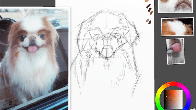 Step 1 japanese chin
