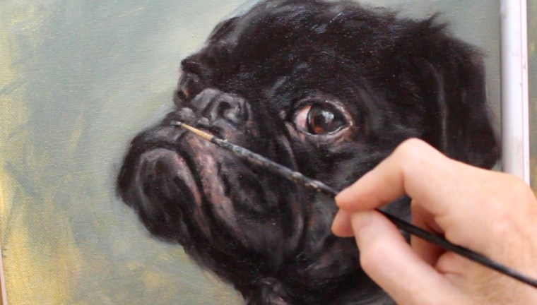 muzzle highlight black pug dog oil painting shelley hanna tutorial how to