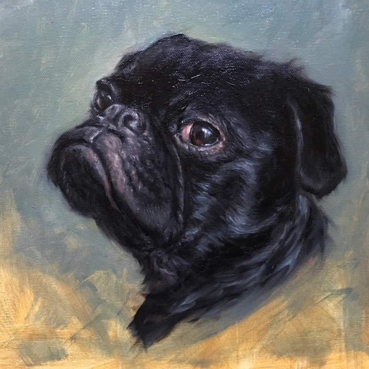 Pet portrait painting final pug painting black pug dog shelley hanna