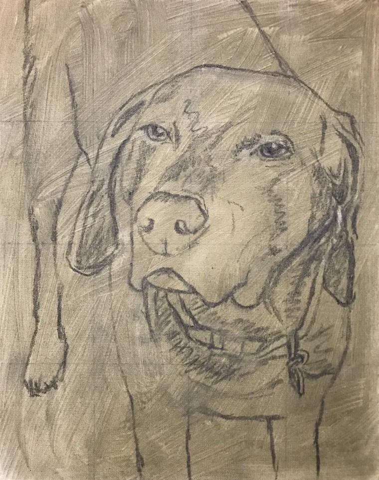 finished duke sketch