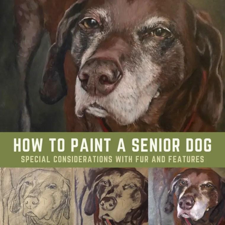 Senior Dog Portrait Title