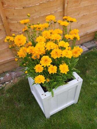 DIY Wooden Planter by Shelley Makes (41)