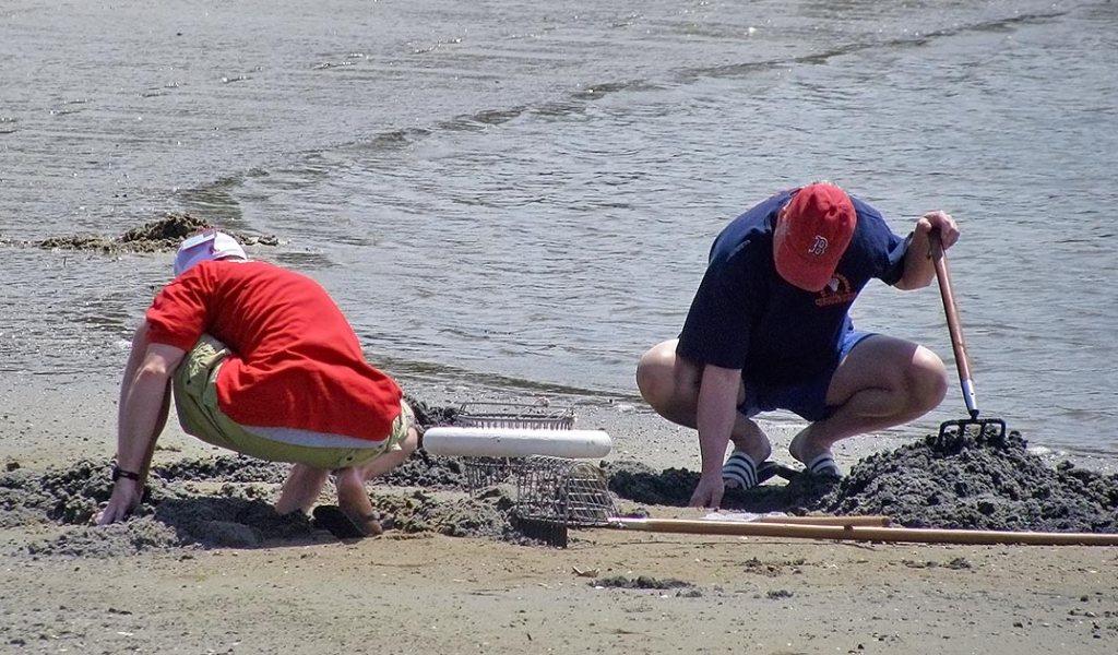 Barnstable Shellfishing Classes for All