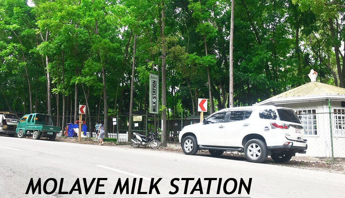 MOLAVE MILK STATION IN BARILI,CEBU