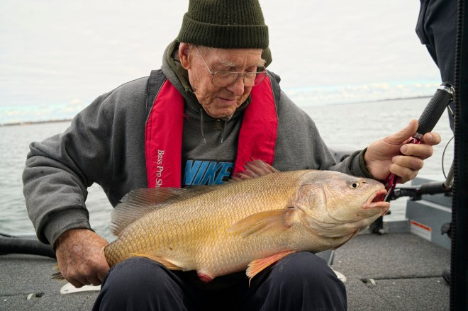 My grandpa and his first ever sheepshead weighing in at over 12 pounds!