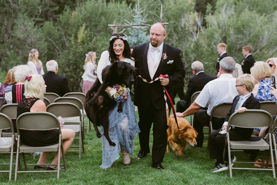 Photographer captures dying dog being carried down aisle