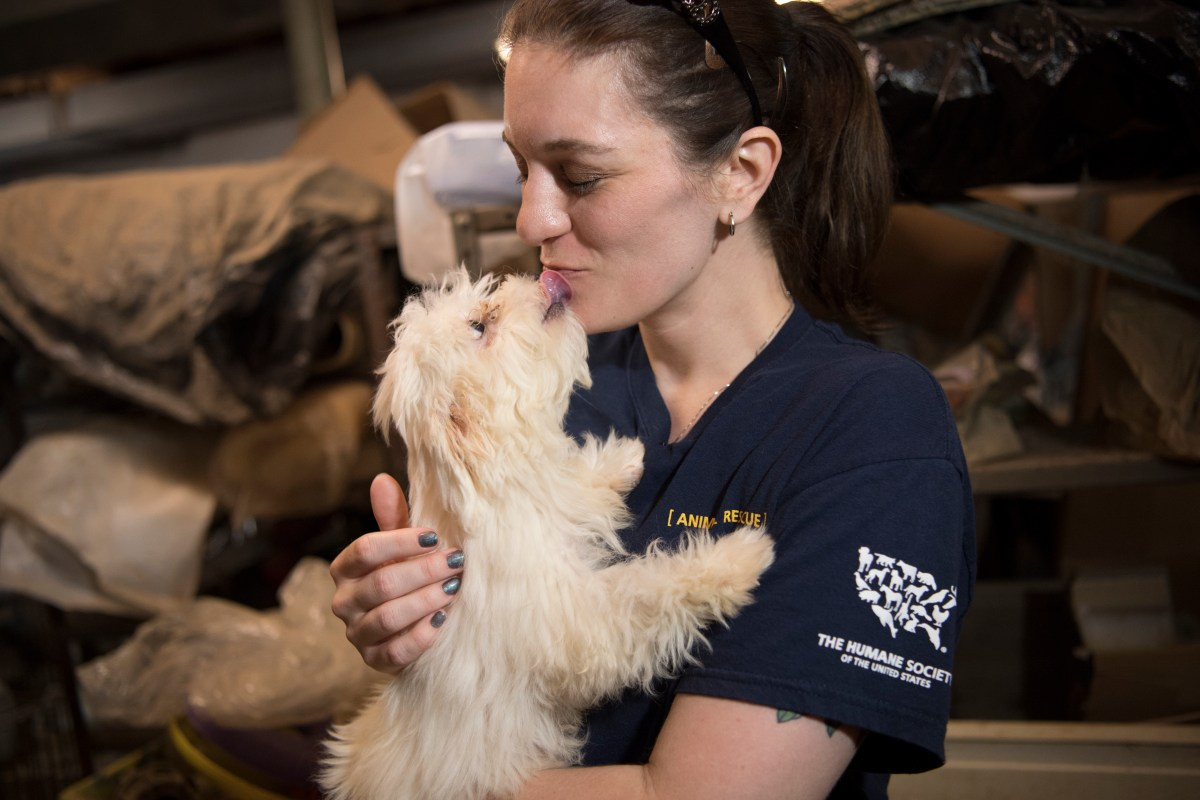 128 Animals Saved In Puppy Mill Bust, Thanks To Anonymous Tips
