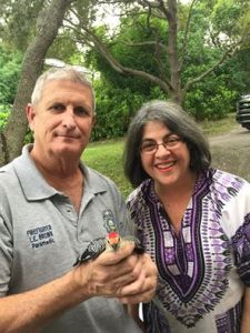 Cava with an injured woodpecker from her yard; she called Wildlife Rescue of Dade County to help