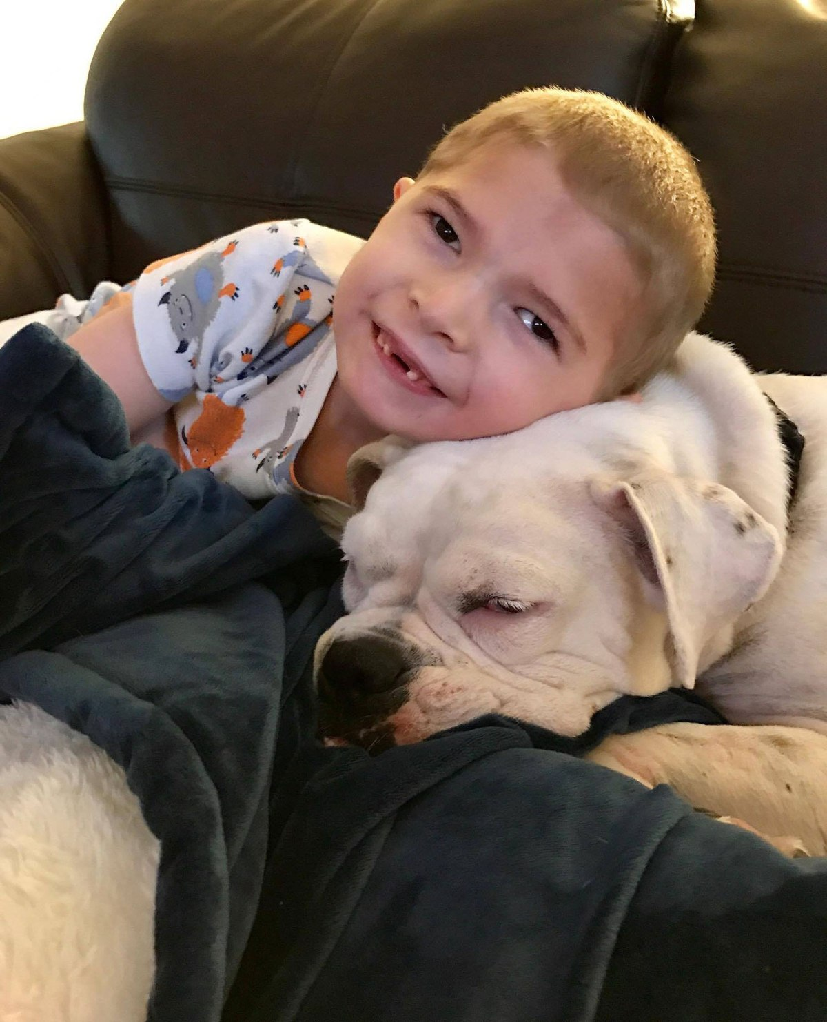 Special Needs Child Finds Best Friend In Deaf Rescue Dog