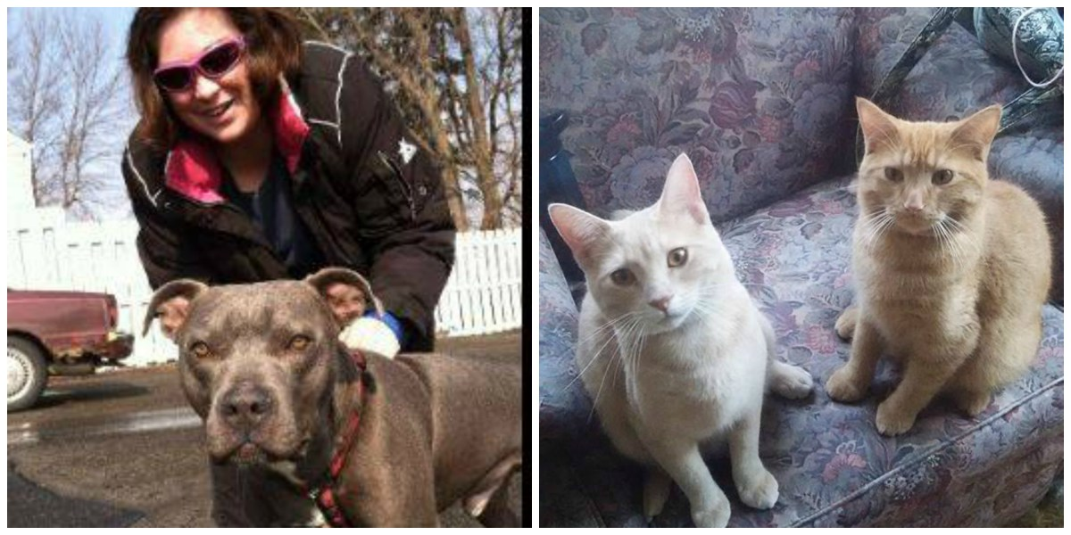 Woman Lost Everything, Including Her Four Beloved Pets, In Deadly Fire