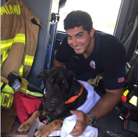 Firefighter rescued elderly dog
