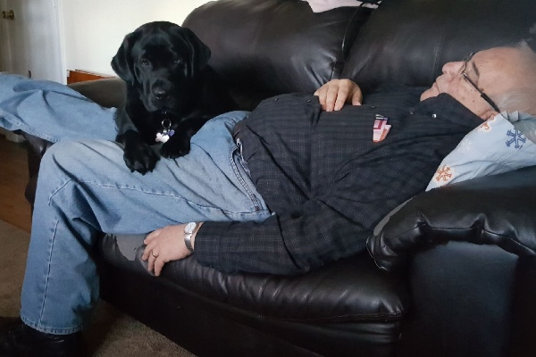 Veteran Exclaims, 'She Is My Hero,' After Being Saved By Service Dog