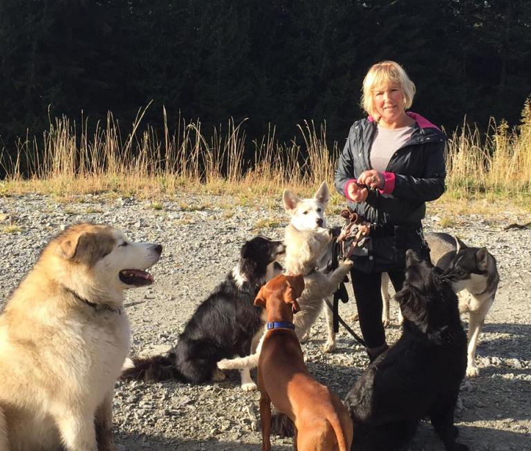 Lost On Mountain, Woman Owes Her Life To Dog Trio