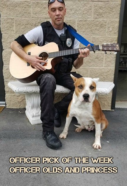 Animal Control Officer Provides 'Free Concert' To Shelter Dogs
