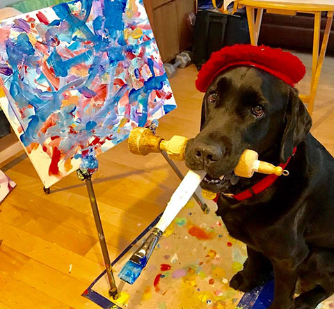 Bid on an Original Painting to Benefit Shelter Pets