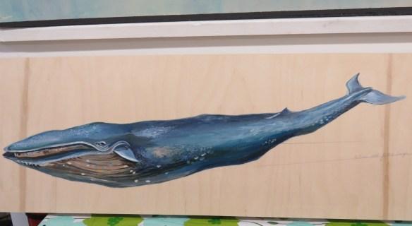 Kath's Canon, September 30, 2015 Rumble Blue Whale Blue Jay 051