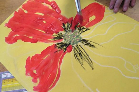 Kath's Canon, November 11, 2015 Grade 3 Poppies, Burnsland, Bush 032