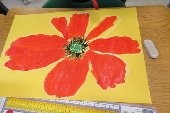 Kath's Canon, November 11, 2015 Grade 3 Poppies, Burnsland, Bush 037
