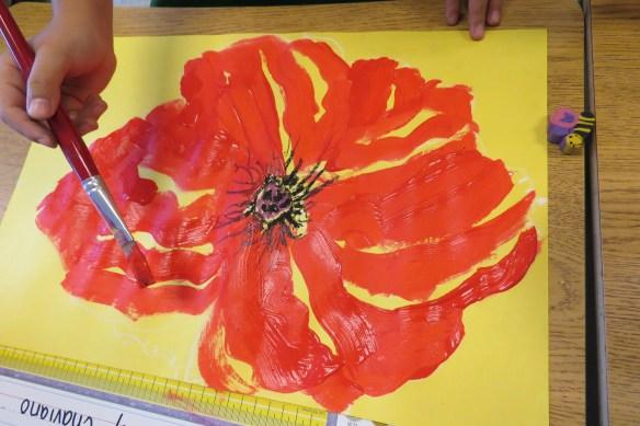 Kath's Canon, November 11, 2015 Grade 3 Poppies, Burnsland, Bush 040