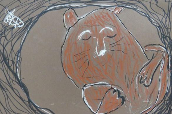 Kath's Canon, January 6, 2016 Salmon gift, Franks, Hibernate 3 083