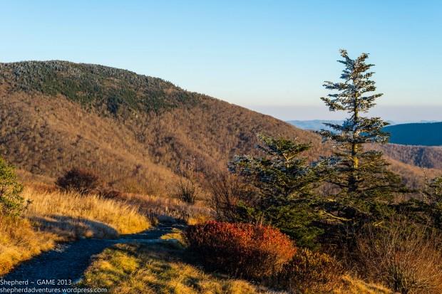 Looking toward Grassy Ridge Bald