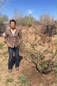 Shepherd of the Valley Presbyterian Church in Albuquerque, NM donates trees to the Rio Grande Community Gardent