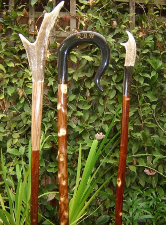 One Buffalo horn crook and two Cattle show canes, sold, commission work