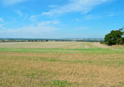 Otterpool Lane Land