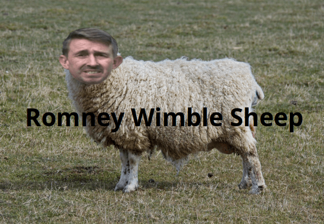 A history of the Romney Wimble sheep companies