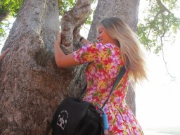 Climbing a tree?