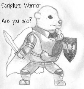 scripture warrior