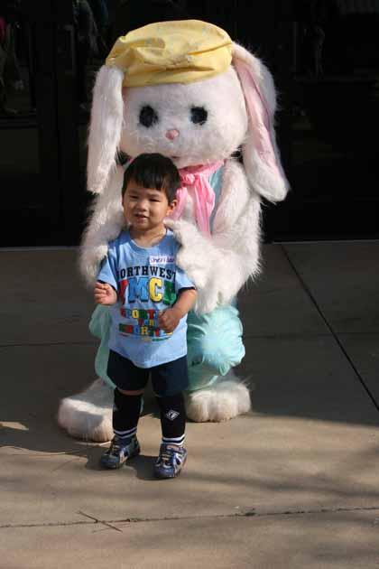 Easter Rabbitt