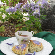 Lavender Scones and tea served in the spring garden with blooming columbines.