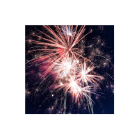 Ring in the New Year with Sheri-D Wilson